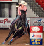 7 Yr old Barrel Horse for Sale
